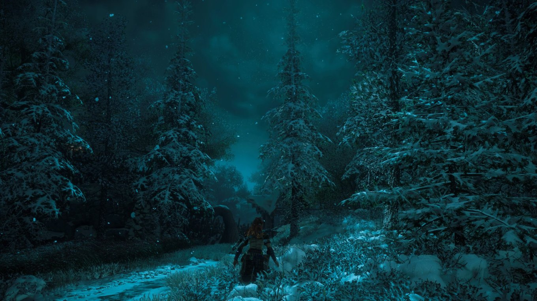 SnowyNight